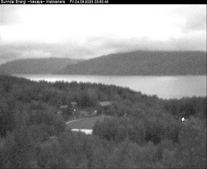 Nesøya